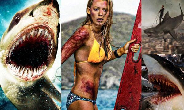 Film sugli squali per una serata da brividi